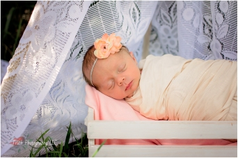 Northglenn-newborn-photography